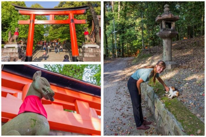 Kyoto Shrine Animals