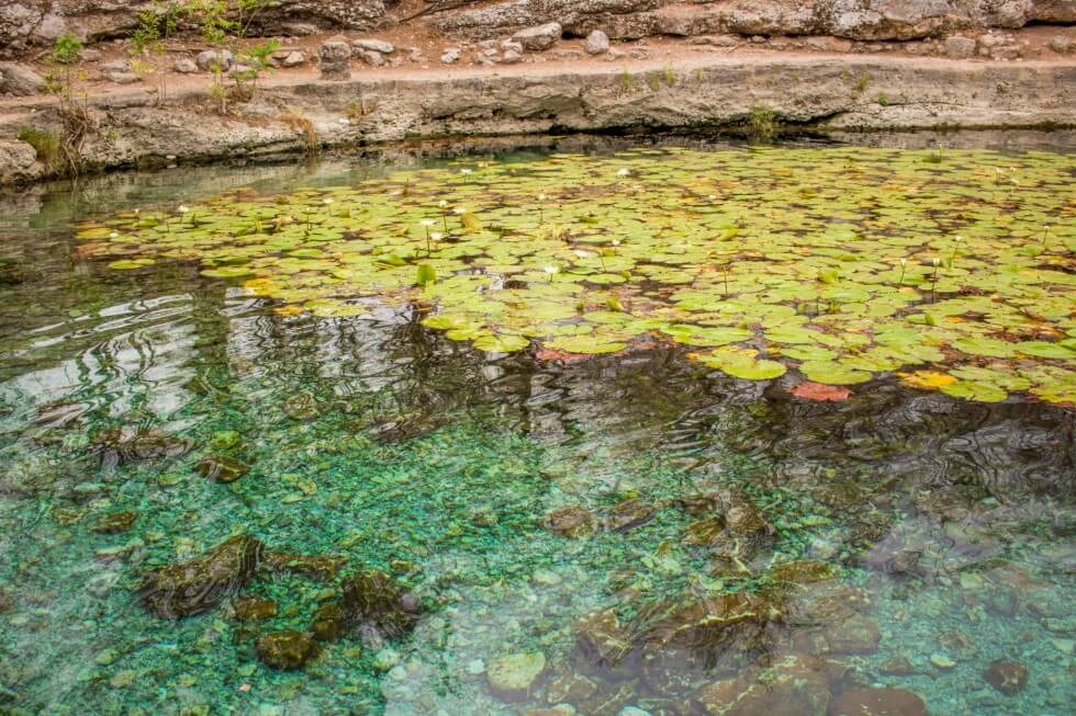 Beautiful Cenote Xlacah in the Dzibilchaltún ruins