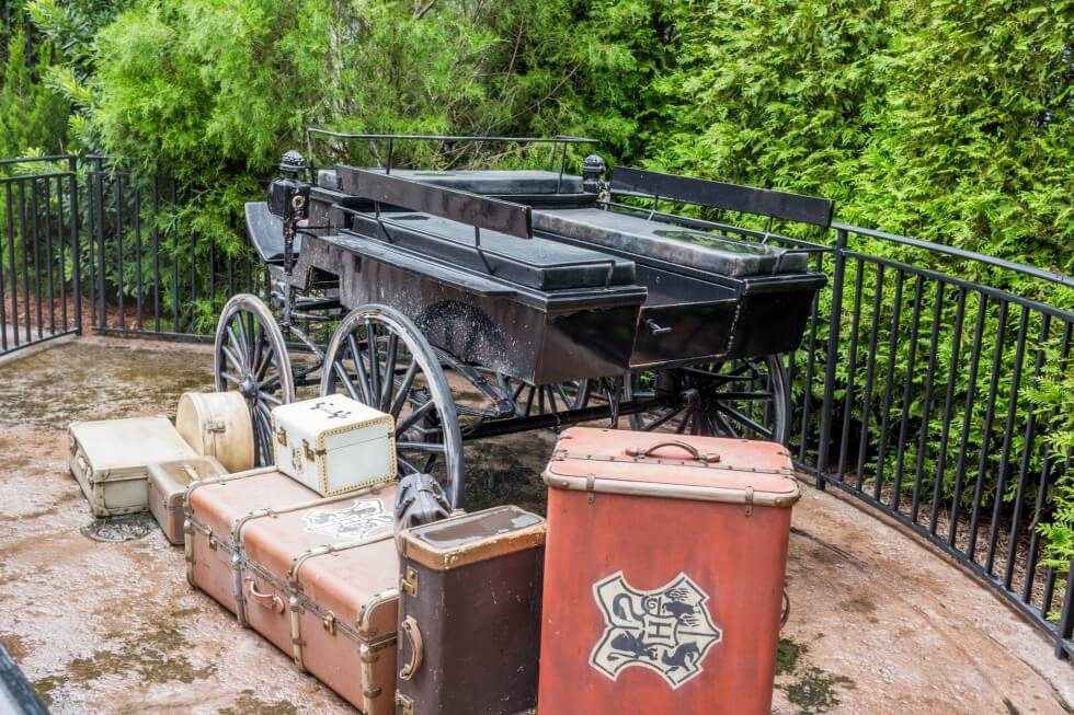Luggage by the Thestral drawn carriage Harry Potter World